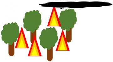 قورقوری و دود جنگل
